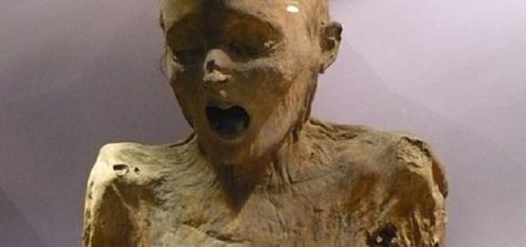 Fotografía de una momia estándar