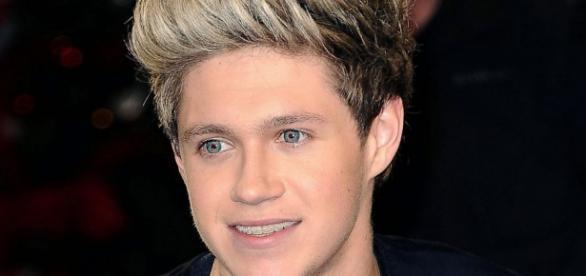 Niall Horan defendeu os fãs dos paparazzi.