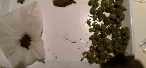 Alcuni grammi di cannabis, tutt'ora fuorilegge.
