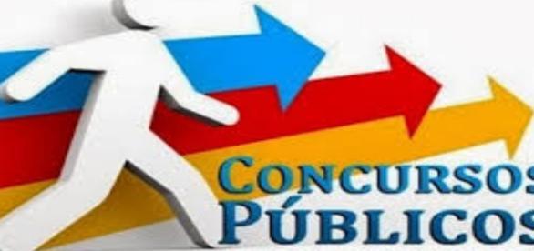 Fraudes em concursos públicos(Foto/Reprodução)