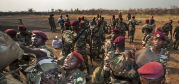 Des éléments de l'armée camerounaise