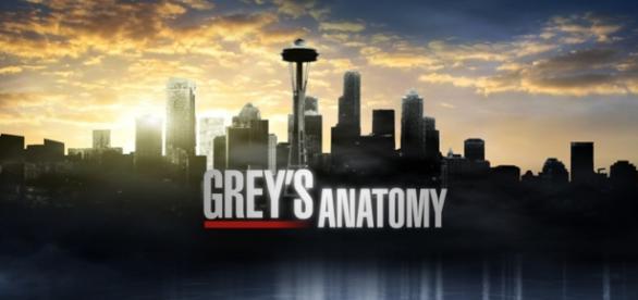 Grey's Anatomy 12x06: 'The Me Nobody Knows'