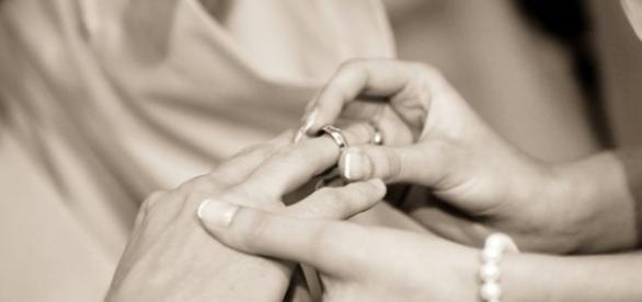 promessa choc: una moglie per gli scapoli