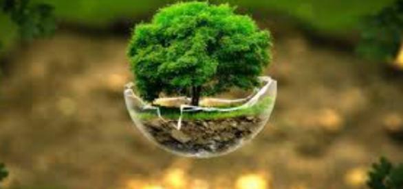 Estudos Geoambientais e Licenciamento