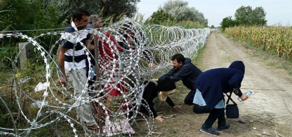 Sírios atravessando fronteira entra na Hungria.