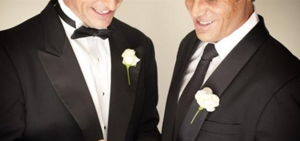 Il consiglio di stato delegittima i matrimoni gay