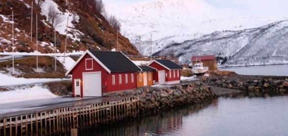 Polacy szukają w Norwegii lepszego życia