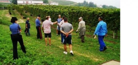 Controale și amenzi severe in Italia
