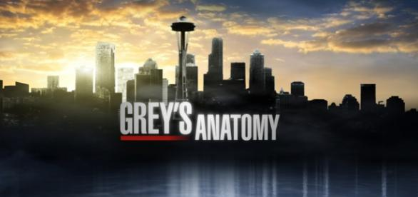 Anticipazioni quarta puntata Grey's Anatomy 12