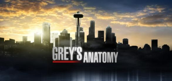 Grey's Anatomy 12, trama settimo episodio