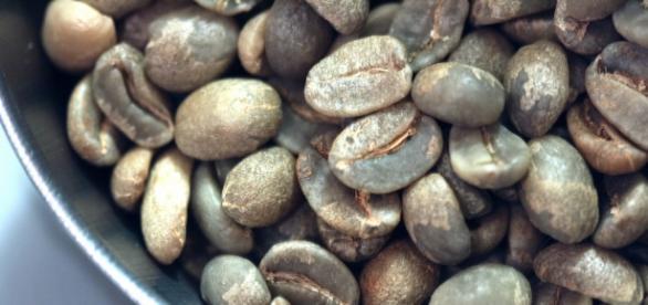 Zielona kawa jest pyszna. Ale czy odchudza?