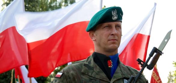 11 listopada-dzień wojskowych parad i manifestacji