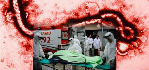 Caso de ebola em Belo Horizonte assusta o país