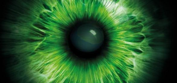 Big Brother Logo von EndemolShine