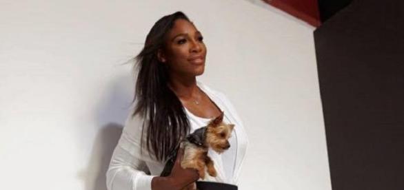 Ist Serena Williams von Rapper Drake schwanger?