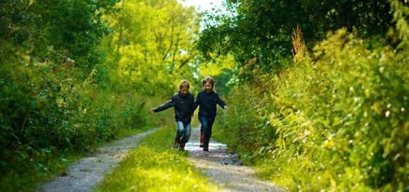 As crianças têm menos contato com a natureza