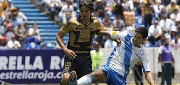 Pumas y Puebla, dos que van a ir a la Libertadores
