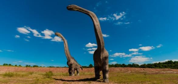 Long-necked sauropods roaming the grasslands.