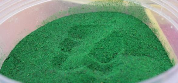 Zielony proszek odchudzający, hit czy kit?