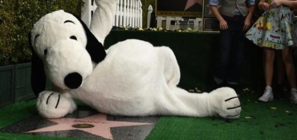 Snoopy ganha estrela em Hollywood