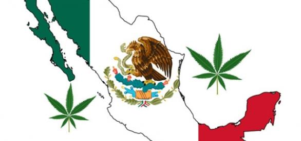 México aprueba uso Marihuana con fines recreativos