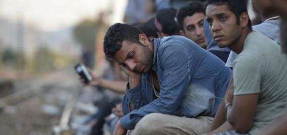 Refugiados vão ter privelégios em Portugal.