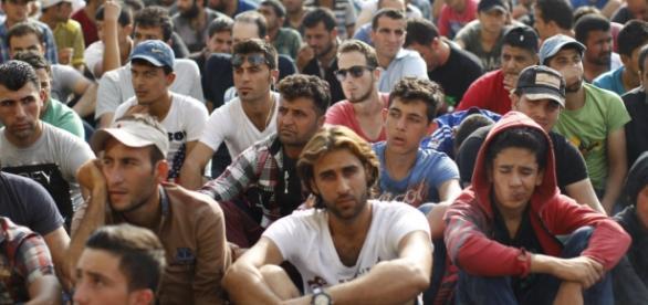 Imigranci to potencjalni kochankowie?