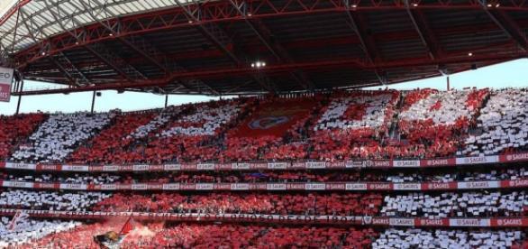 Siga a par e passo o Benfica - Boavista.