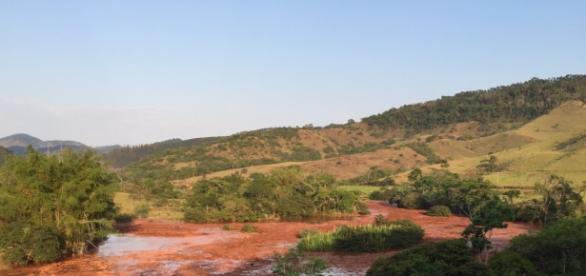 O rio doce é tomando por lama da barragem.