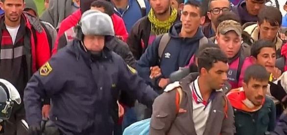Czy tak będą wracać z Europy rzekomi uchodźcy?