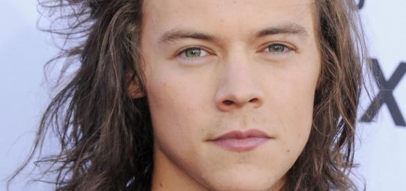 Harry Styles pode mesmo fazer uma pausa