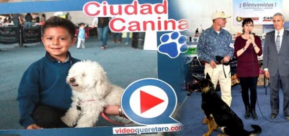 Fotos proporcionadas por videoqueretaro.com