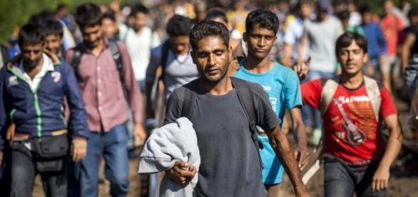 Refugiados recusam a ajuda portuguesa