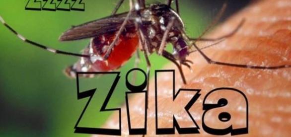 Zika, Um perigo pouco conhecido
