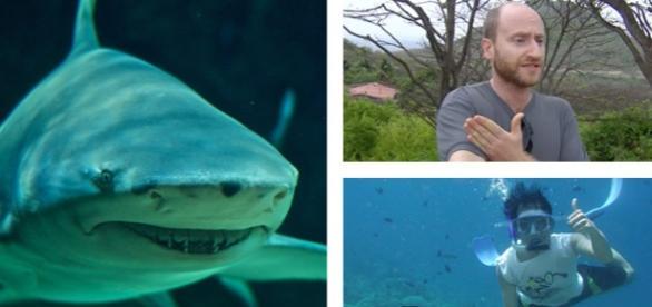 I-a salvat viaţa unui om atacat de un rechin taur