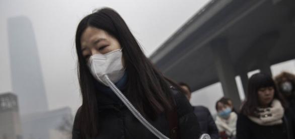 A População Tem Usado máscaras e purificadores