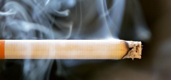 Tabakregulierung gefährdet die Gesundheit