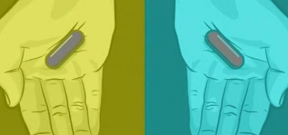 Que cor você está vendo? Azul, vermelho ou cinza?