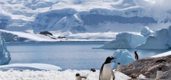 Aumento da temperatura nos oceanos
