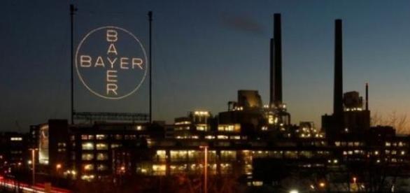 Bayer oferece vagas de  estágio  nos EUA e Europa