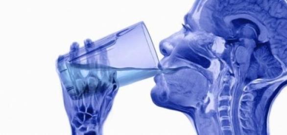 Consumul excesiv de alcool micsoreaza creierul.