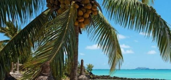 Rajskie plaże na Mauritiusie.