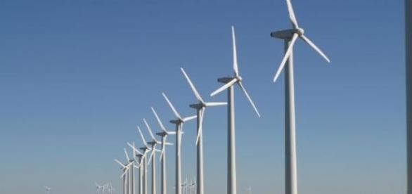 Eólicas são alternativa de fonte renovável