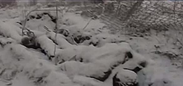 Tysiące zabitych ukraińskich żołnierzy