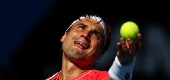 David Ferrer não teve dificuldades na final
