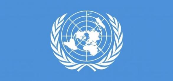 ONU oferece vagas em diferentes áreas de atuação