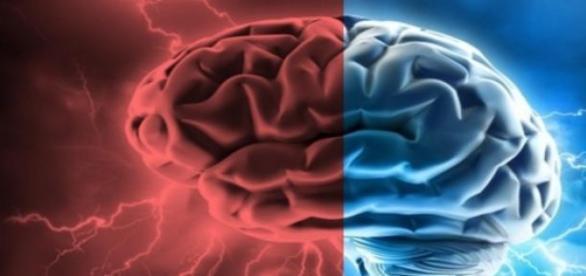 Mulheres têm melhor memória social, diz estudo