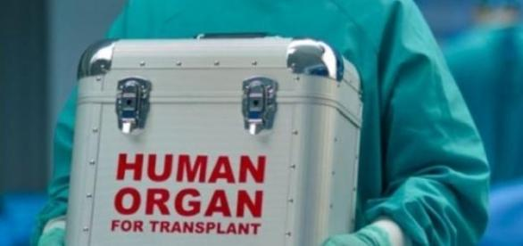 Avanpremiera! primul transplant de cap