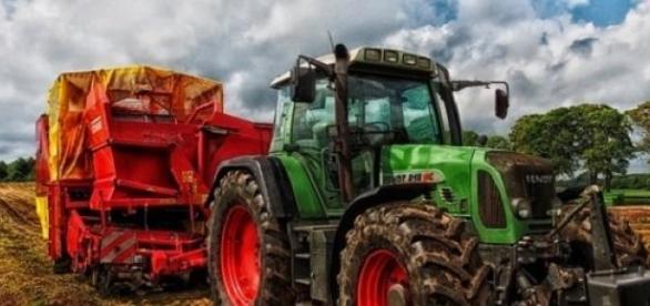 Rolnicy są niezadowoleni z opłacalności ich pracy.