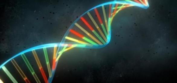 Científicos logran que células rejuvenezcan